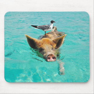 Cute pig swimming in water mouse pads