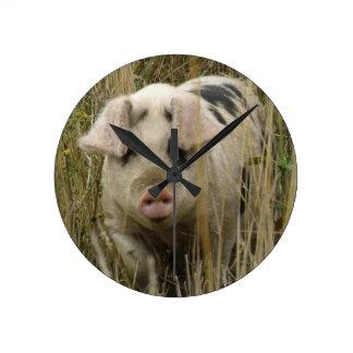 Cute Pig Wall Clock