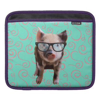 Cute Pig Wearing Glasses - Blue Back Sleeves For iPads