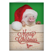 Cute Piggy Pudding Christmas Pig in Santa Hat Card