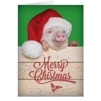 Cute Piggy Pudding Christmas Pig in Santa Hat Card