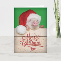 Cute Piggy Pudding Christmas Pig in Santa Hat Holiday Card