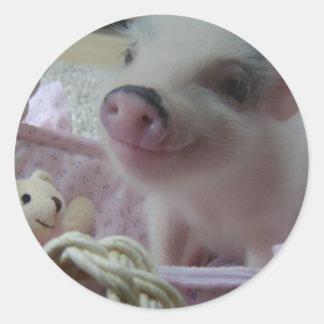 Cute Piglet Classic Round Sticker