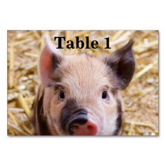 Cute Piglet Table Card