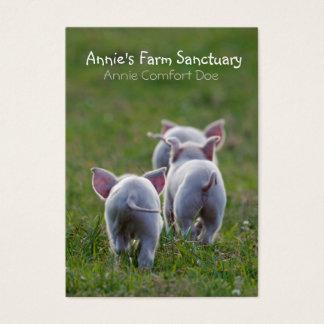 Cute Piglets Farm Sanctuary Business Card