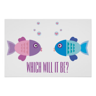 Cute Pink and Blue Cartoon Fish - Gender Reveal Poster
