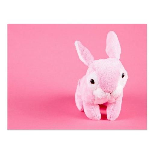 Cute Pink Bunny Postcard