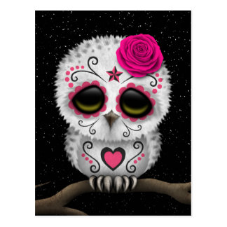 Cute Pink Day of the Dead Sugar Skull Owl Stars Postcard