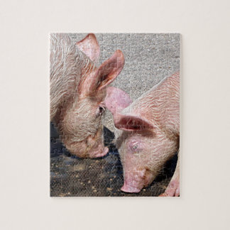 Cute pink pigs jigsaw puzzle