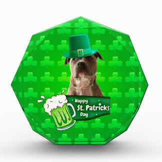 Cute Pit Bull Dog Hat St. Patrick's Day w Clovers Acrylic Award