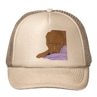 Cute Pit Bull in a Blanket - Line Art Portrait Hat
