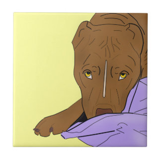 Cute Pit Bull in a Blanket - Line Art Portrait Tile