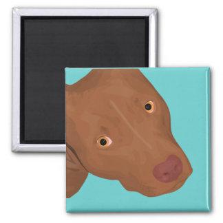 Cute Pit Bull portrait Magnet