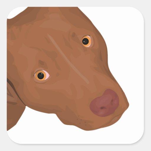 Cute Pit Bull portrait Square Stickers