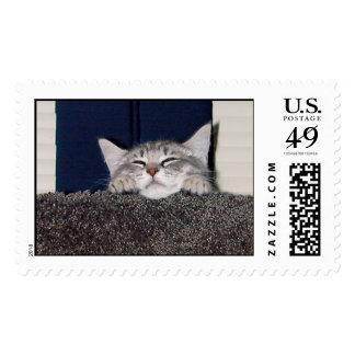 Cute_Pixie Stamp