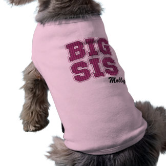Cute Plaid Pink Big Sis with Customizable Name Dog Clothes