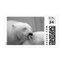Cute polar bear Christmas postage stamps