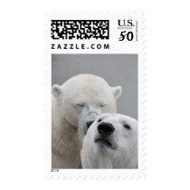 Cute Polar Bear Couple Arctic Animal Stamp