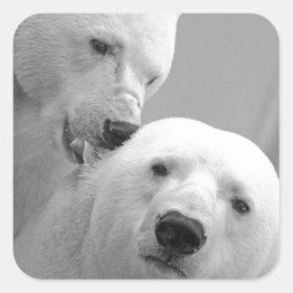 Cute polar bear couple square stickers