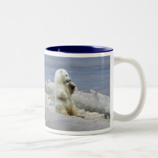 Cute Polar Bear Cub & Arctic Ice Coffee Cup