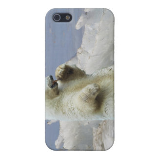 Cute Polar Bear Cub & Arctic Ice iPhone SE/5/5s Cover