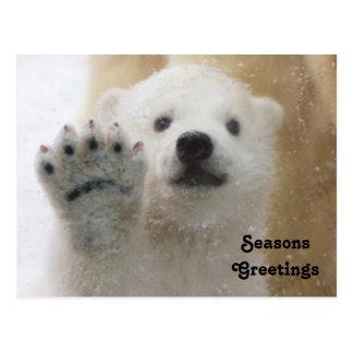 Cute Polar Bear Cub Waving Postcard