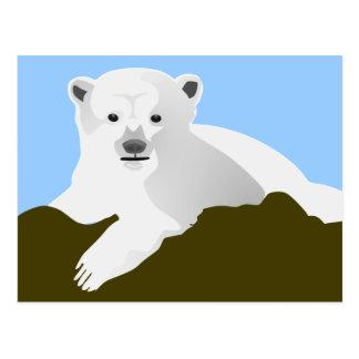 Cute Polar Bear Postcard