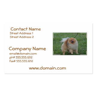 Cute Pomeranian Double-Sided Standard Business Cards (Pack Of 100)