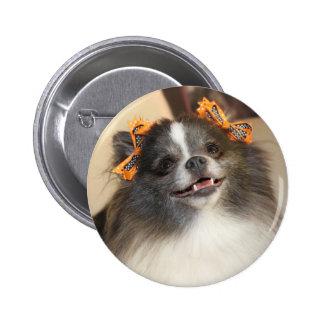 Cute Pomeranian dog Button
