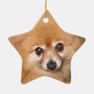 Cute Pomeranian Face Ceramic Ornament