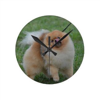 Cute Pomeranian Round Clock