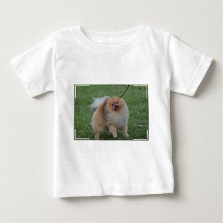 Cute Pomeranian Tshirt