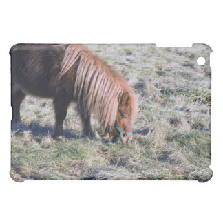 Cute pony grazing on the paddock. iPad mini cover