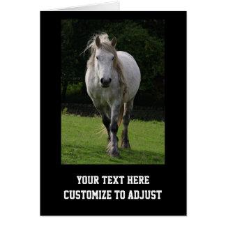 Cute pony photograph card