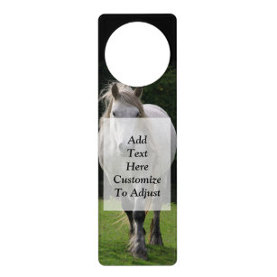 Cute pony photograph door hanger
