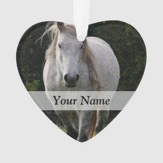 Cute pony photograph ornament
