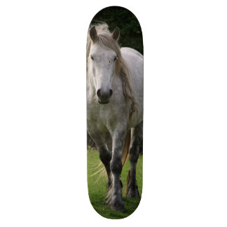 Cute pony photograph skateboard deck