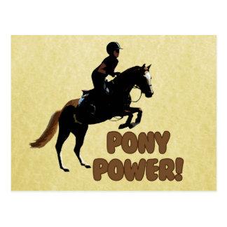 Cute Pony Power Equestrian Postcard