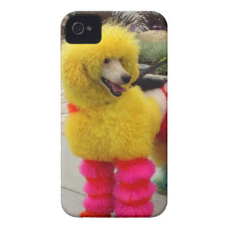 Cute Poodle iPhone 4 Cover