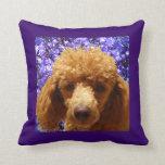 Cute Poodle Pillows