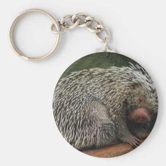 Cute Porcupine Keychain