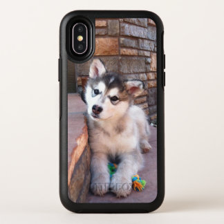 Cute Posing Alaskan Malamute Puppy Photograph OtterBox Symmetry iPhone X Case