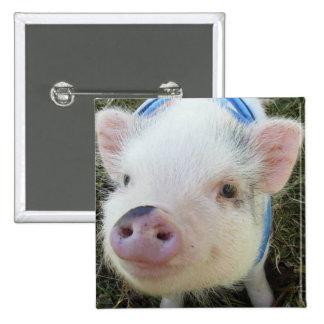 Cute Pot Belly Pig Button