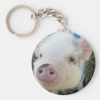 Cute Pot Belly Pig Keychain