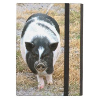 Cute Potbelly Pig Photo   Farm Animals iPad Air Case