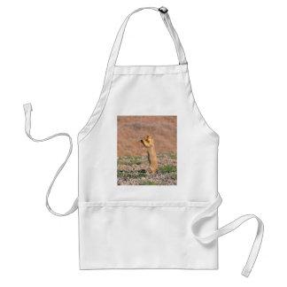 Cute prairie dog eating adult apron