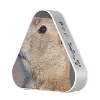 Cute Prairie Dog Speaker