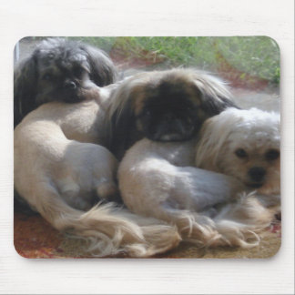 Cute Pretty Dogs Puppies lying down on mouse pad