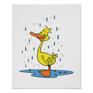 cute puddle duck in the rain poster