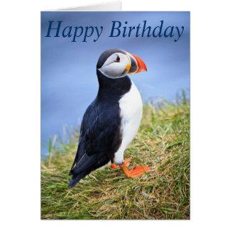 Cute Puffin Happy Birthday Greeting Card